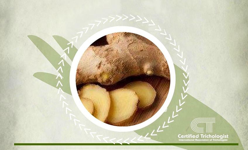 Herbs 4hair for Ginger