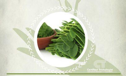 Herbs 4hair for Moringa